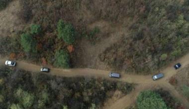 Deliblatska peščara: pošumljavanje počelo pre 200 godina