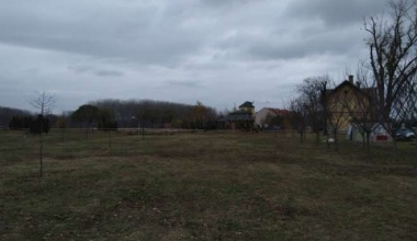 Akcija sadnje drveća u Parku prijateljstva u Pančevu 14. decembra (VIDEO)