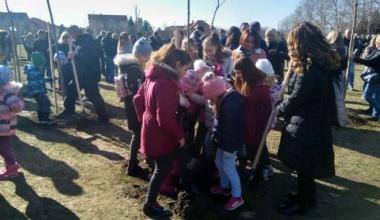 Pančevo: u naselju Kotež 2 zasađeno 120 sadnica lišćara
