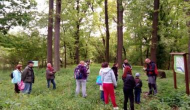 Gradska šuma – zelena oaza Pančeva (FOTO)