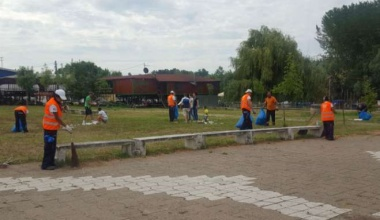 Organizovana akcija čišćenja Tamiškog keja